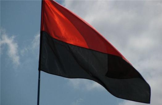 На матче в Донецке болельщика задержали за красно-черный флаг!